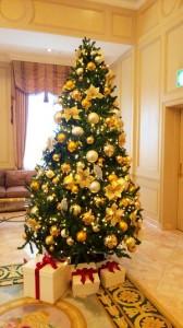 クリスマスの計画は?