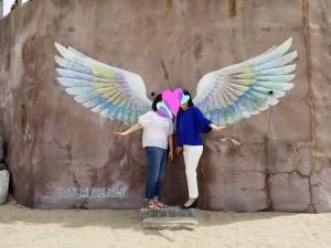 天使の羽20180904_133916