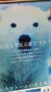 policefire_bear