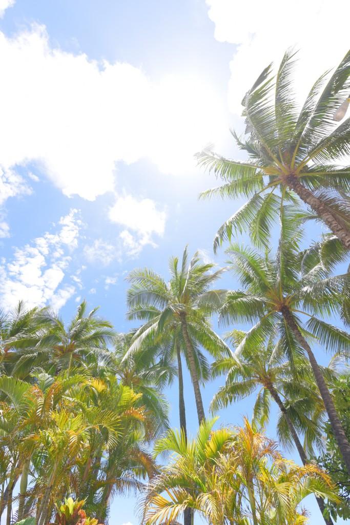 ハワイならではのレッスン♪