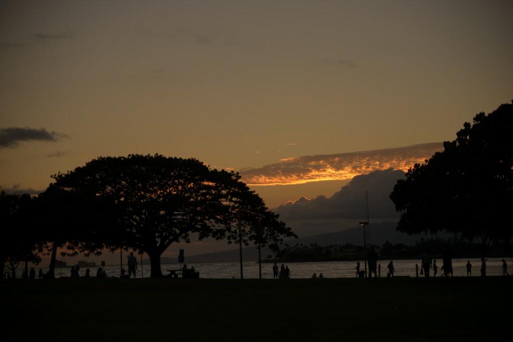 ハワイ島でのおすすめスクール♪