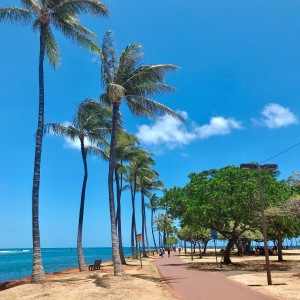 ハワイ留学ならスタディハワイ!