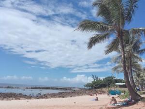 ハワイに留学したい…でもどうしたら?