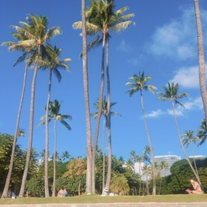 ハワイの良いところ!