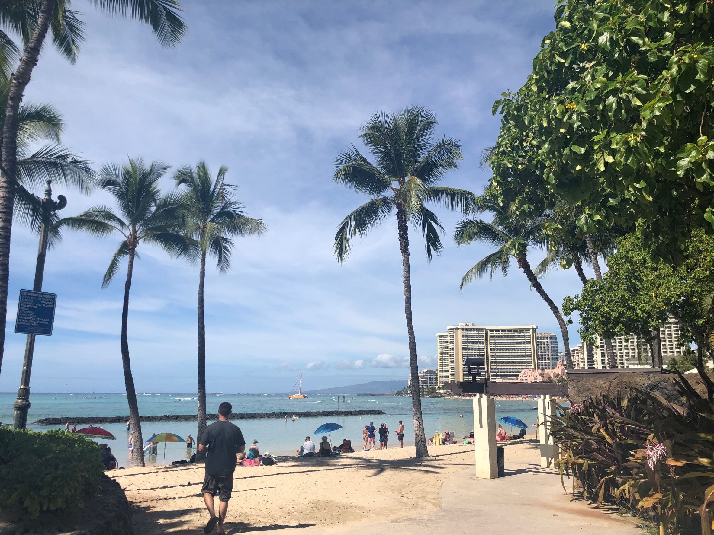 ブログ 2020 ハワイ