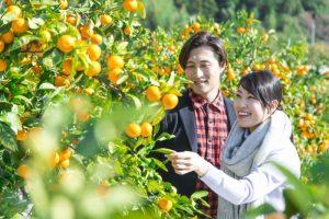 これで攻略!四国4県の恋愛観・結婚観