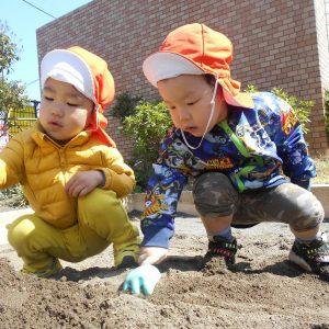 育脳と外遊びの関係